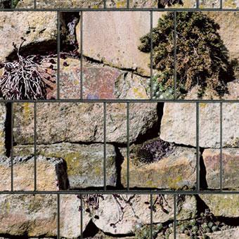 PES Sichtschutzstreifen Motiv Steingewächs Detailansicht