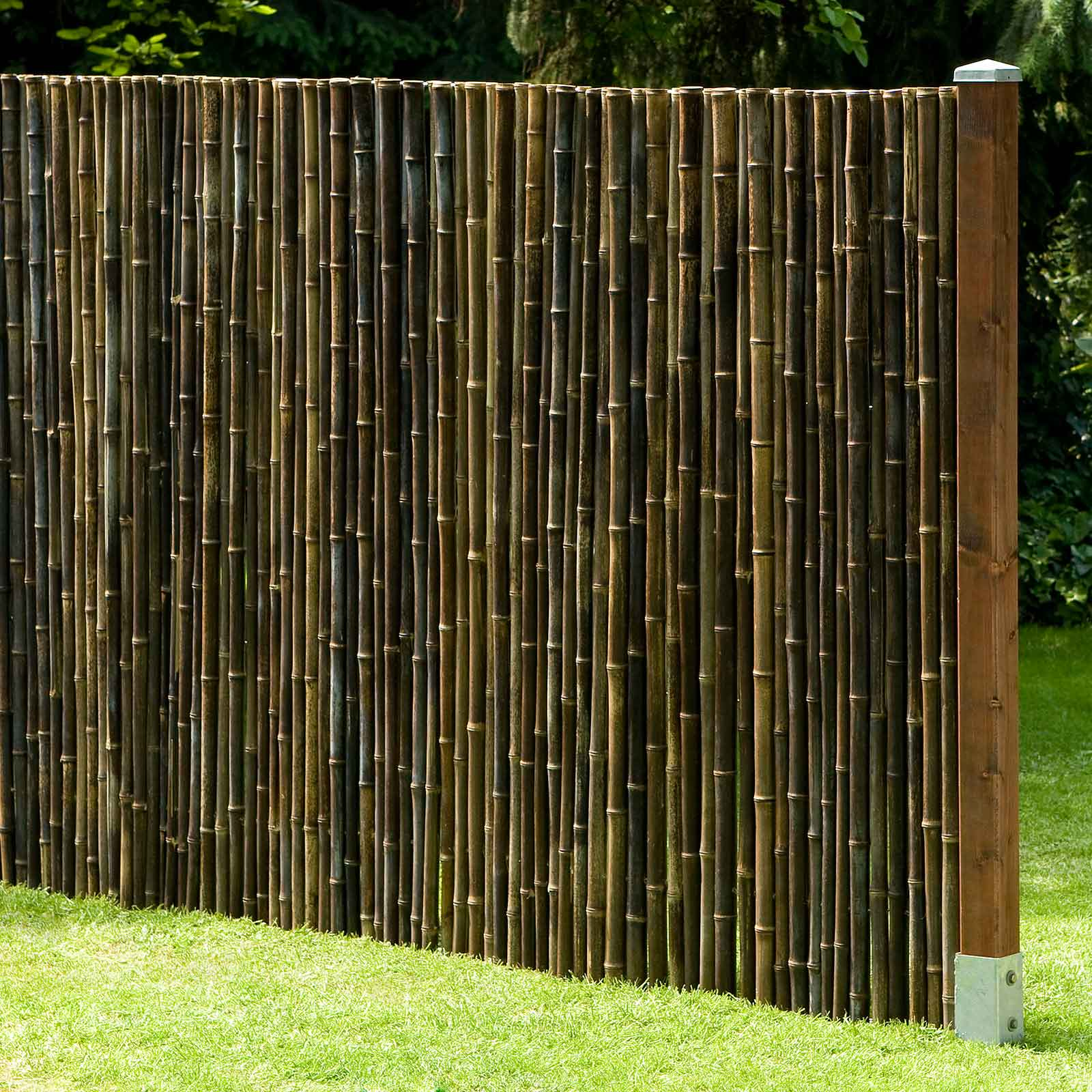 Sichtschutz Bambuszaun Black Schwarzer Bambus 100 X 180cm Zaun