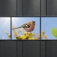 Sichtschutzstreifen mit verschiedenen Gartenvögeln für den Gartenzaun