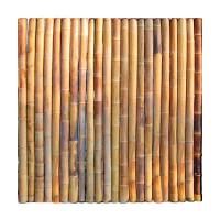 Bambuswand ohne Pfosten - 150cm x 150cm