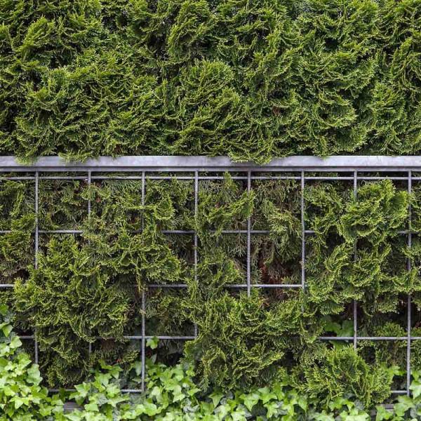 Gartenbanner Motiv Timea
