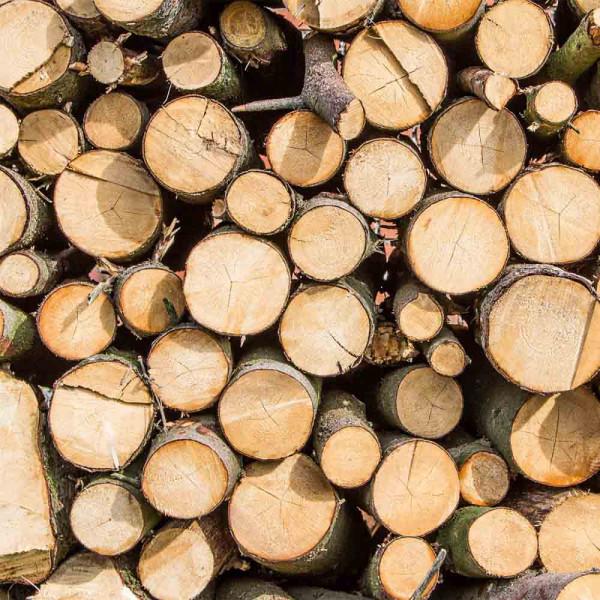 Sichtschutzplane Woodi