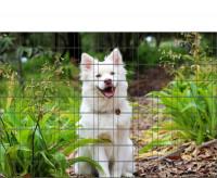 Bedrucktes Zaunposter Sichtschutz Motiv Hundewelpe 9 Streifen