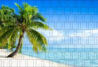 Bedruckter Zaun Sichtschutz Palmenstrand